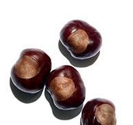 Horse chestnut aescin